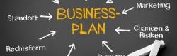 Wie realistisch ist der Businessplan?